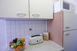 kitchen is equipped with toaster and microwave