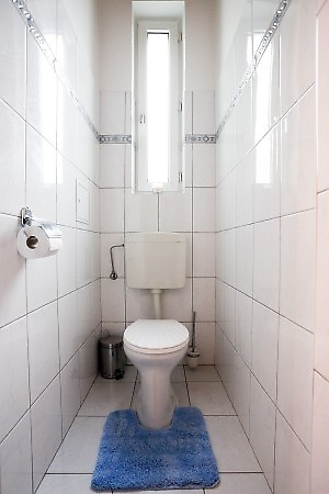 toilet is seperated with small blue carpet